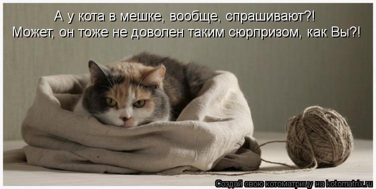 Котоматрица: А у кота в мешке, вообще, спрашивают?! Может, он тоже не доволен таким сюрпризом, как Вы?!