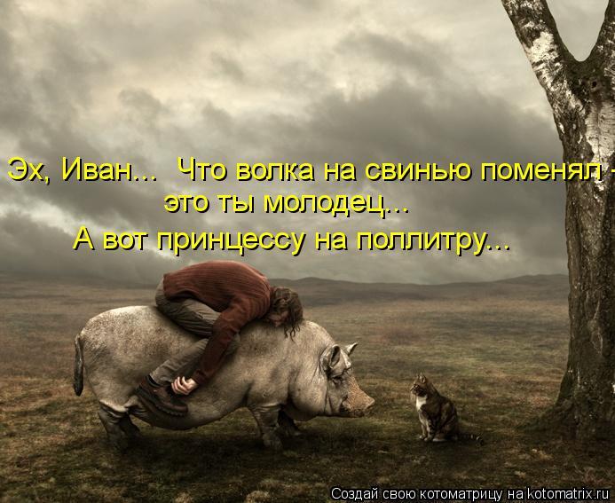 Котоматрица: Эх, Иван...  Что волка на свинью поменял - это ты молодец... А вот принцессу на поллитру...