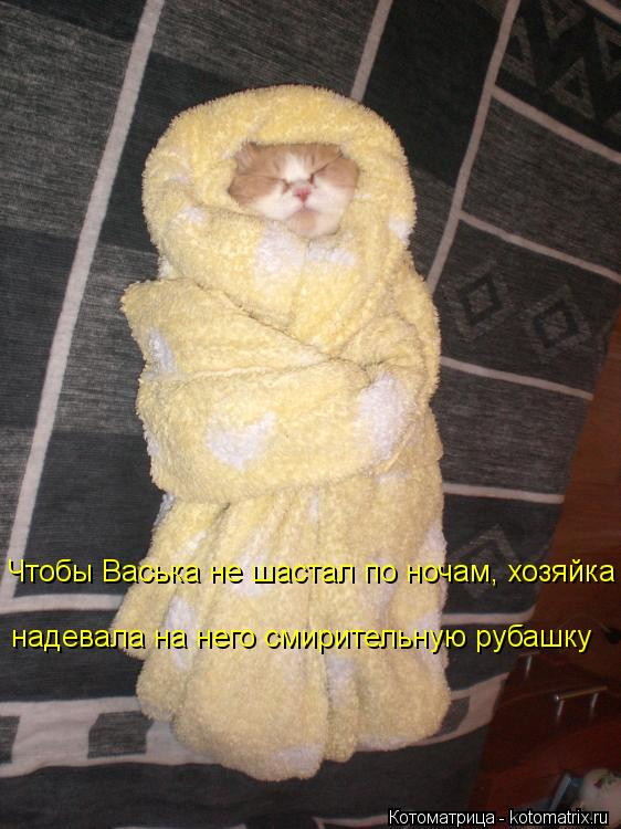 Котоматрица: Чтобы Васька не шастал по ночам, хозяйка надевала на него смирительную рубашку