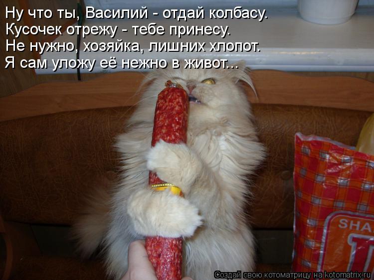 Котоматрица: Ну что ты, Василий - отдай колбасу. Кусочек отрежу - тебе принесу. Не нужно, хозяйка, лишних хлопот. Я сам уложу её нежно в живот...