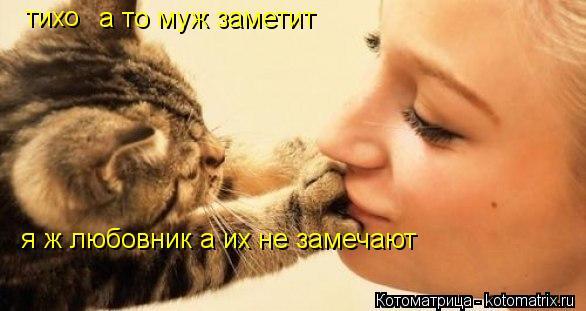Котоматрица: тихо а то муж заметит я ж любовник а их не замечают