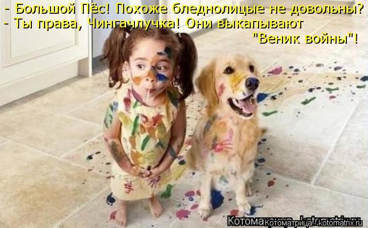 """Котоматрица: - Большой Пёс! Похоже бледнолицые не довольны? - Ты права, Чингачлучка! Они выкапывают   """"Веник войны""""!"""