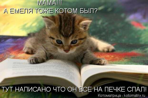 Котоматрица: МАМА!!! А ЕМЕЛЯ ТОЖЕ КОТОМ БЫЛ? ТУТ НАПИСАНО ЧТО ОН ВСЕ НА ПЕЧКЕ СПАЛ!