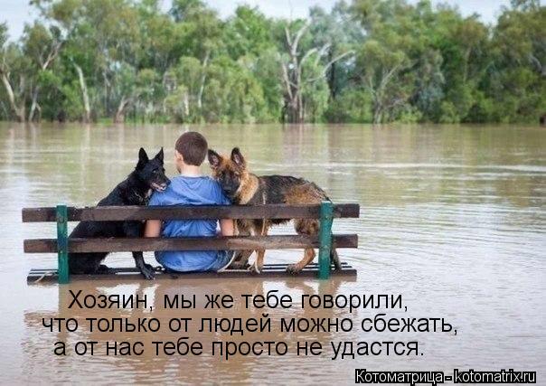 Котоматрица: Хозяин, мы же тебе говорили, что только от людей можно сбежать, а от нас тебе просто не удастся.