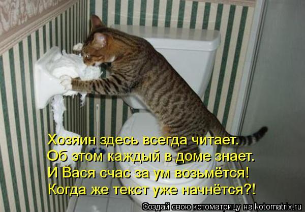 Котоматрица: Хозяин здесь всегда читает. Об этом каждый в доме знает. И Вася счас за ум возьмётся! Когда же текст уже начнётся?!