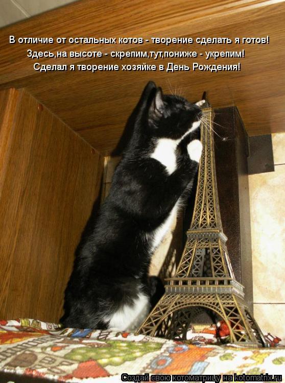 Котоматрица: В отличие от остальных котов - творение сделать я готов! Здесь,на высоте - скрепим,тут,пониже - укрепим! Сделал я творение хозяйке в День Рожд