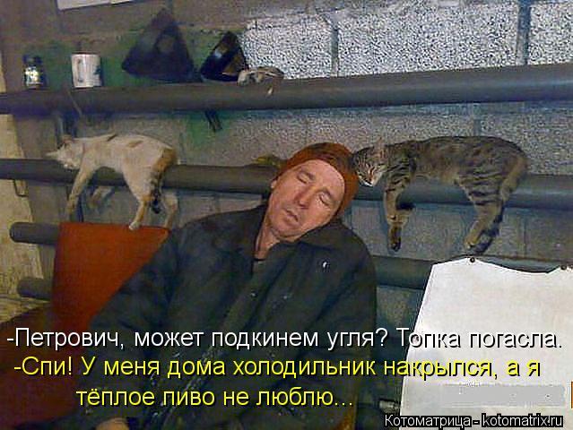 Котоматрица: -Петрович, может подкинем угля? Топка погасла.  -Спи! У меня дома холодильник накрылся, а я тёплое пиво не люблю...