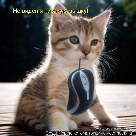 Котоматрица: Не видел я никакую мышку!