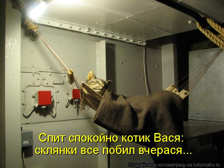 Котоматрица: Спит спокойно котик Вася: склянки все побил вчерася...