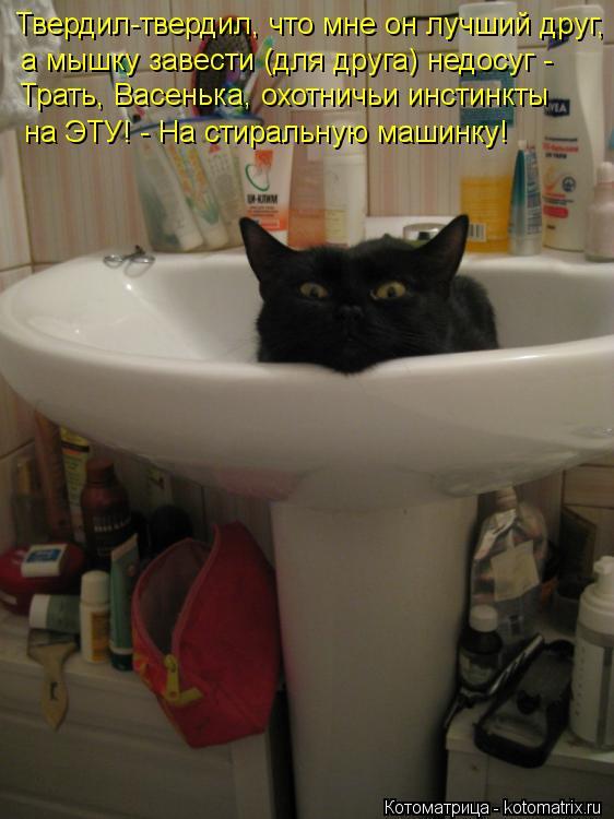 Котоматрица: Твердил-твердил, что мне он лучший друг, Трать, Васенька, охотничьи инстинкты на ЭТУ! - На стиральную машинку! а мышку завести (для друга) недо