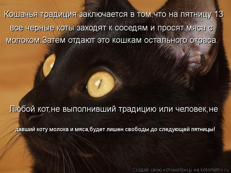 Котоматрица: Кошачья традиция заключается в том,что на пятницу 13  все черные коты заходят к соседям и просят мяса с молоком.Затем отдают это кошкам остал