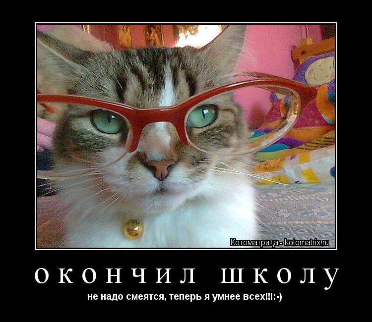 Котоматрица: окончил школу не надо смеятся, теперь я умнее всех!!!:-)