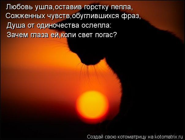 Котоматрица: Любовь ушла,оставив горстку пепла, Сожженных чувств,обуглившихся фраз, Душа от одиночества ослепла: Зачем глаза ей,коли свет погас?