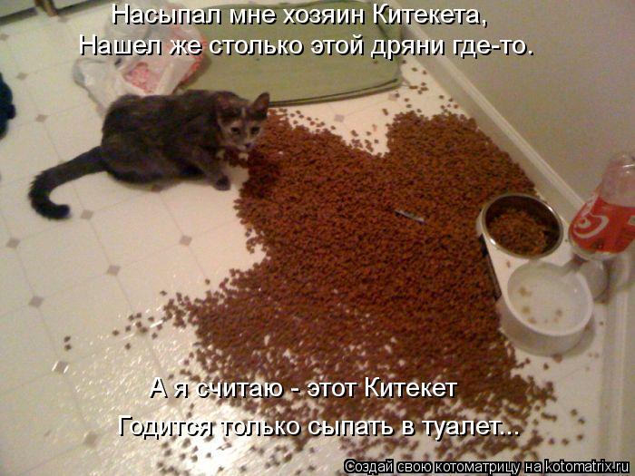 Котоматрица: Насыпал мне хозяин Китекета, Нашел же столько этой дряни где-то. А я считаю - этот Китекет Годится только сыпать в туалет...