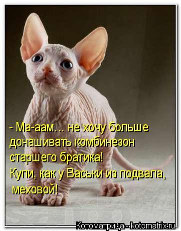 Котоматрица: - Ма-аам… не хочу больше  донашивать комбинезон старшего братика! Купи, как у Васьки из подвала,  меховой!