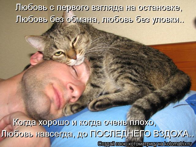http://kotomatrix.ru/images/lolz/2012/09/24/kotomatritsa_3R.jpg