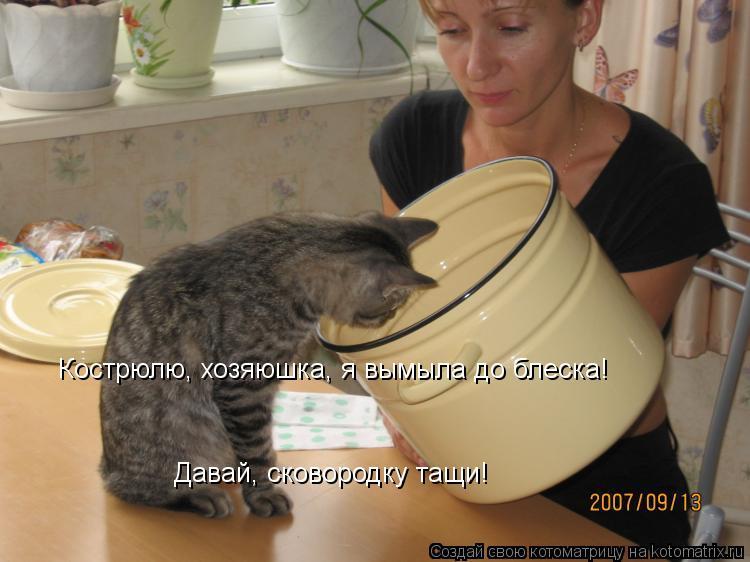 Котоматрица: Кострюлю, хозяюшка, я вымыла до блеска! Давай, сковородку тащи!
