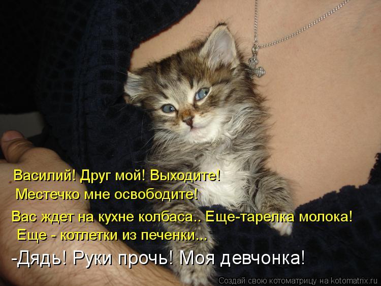 Котоматрица: Василий! Друг мой! Выходите! Местечко мне освободите! Вас ждет на кухне колбаса.. Еще-тарелка молока! -Дядь! Руки прочь! Моя девчонка! Еще - кот