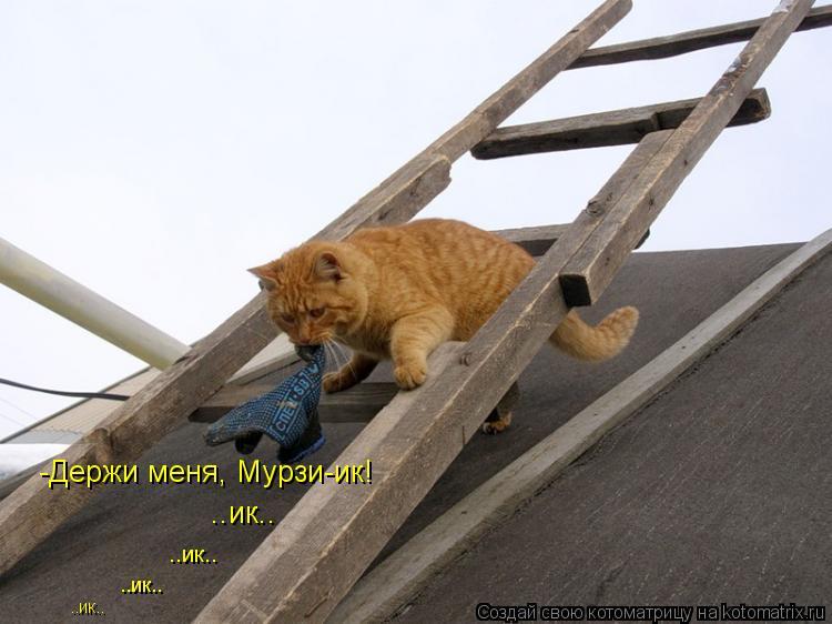 Котоматрица: -Держи меня, Мурзи-ик! ..ик.. ..ик.. ..ик.. ..ик..