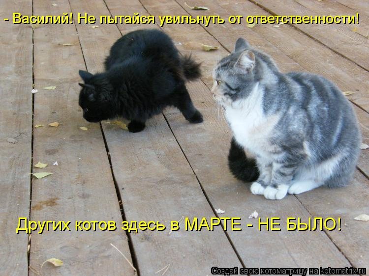 Котоматрица: - Василий! Не пытайся увильнуть от ответственности! Других котов здесь в МАРТЕ - НЕ БЫЛО!