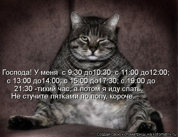 Котоматрица: Господа! У меня  с 9:30 до10:30; с 11:00 до12:00; с 13:00 до14:00; с 15:00 до17:30; с 19:00 до  21:30 -тихий час, а потом я иду спать. Не стучите пятками по полу, короче...