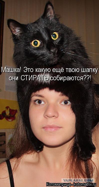 Котоматрица: Машка! Это какую ещё твою шапку  они СТИРАТЬ собираются??!