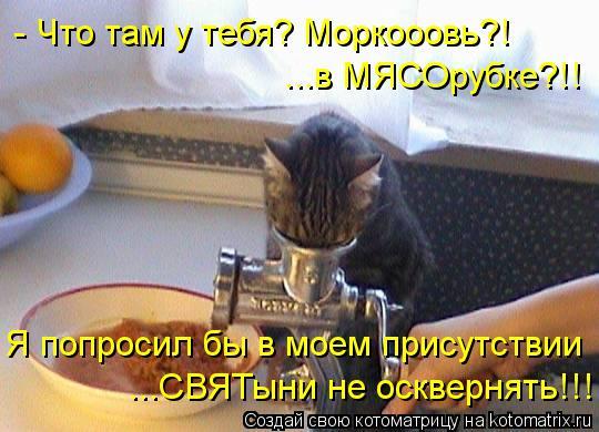 Котоматрица: - Что там у тебя? Моркооовь?! ...в МЯСОрубке?!! Я попросил бы в моем присутствии ...СВЯТыни не осквернять!!!