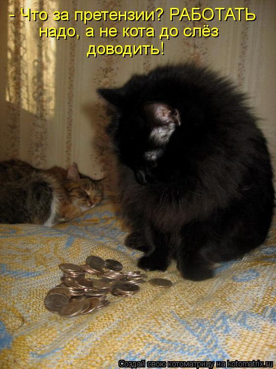 Котоматрица: - Что за претензии? РАБОТАТЬ надо, а не кота до слёз доводить!