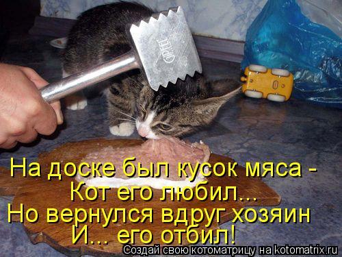 Котоматрица: На доске был кусок мяса -  Кот его любил... Но вернулся вдруг хозяин И... его отбил!