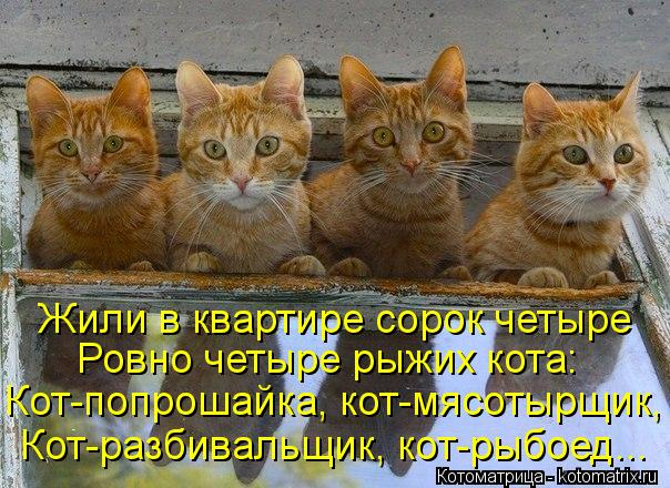 Котоматрица: Жили в квартире сорок четыре Ровно четыре рыжих кота: Кот-попрошайка, кот-мясотырщик, Кот-разбивальщик, кот-рыбоед...