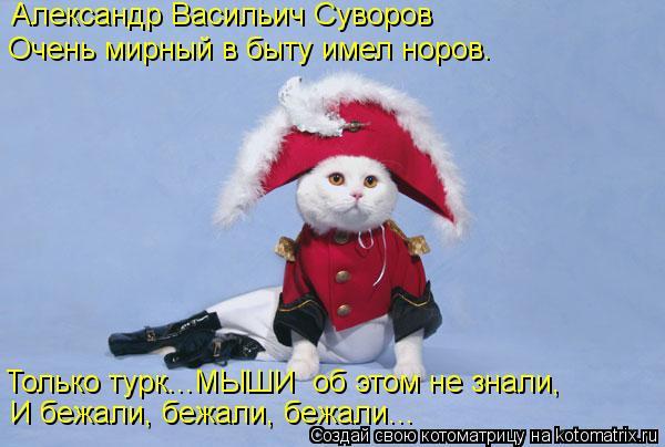 Котоматрица: Александр Васильич Суворов Очень мирный в быту имел норов. Только турк...МЫШИ  об этом не знали, И бежали, бежали, бежали...
