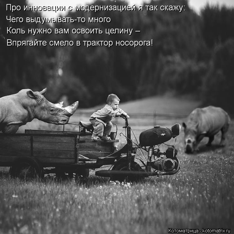 Котоматрица: Про инновации с модернизацией я так скажу: Чего выдумывать-то много Коль нужно вам освоить целину – Впрягайте смело в трактор носорога!