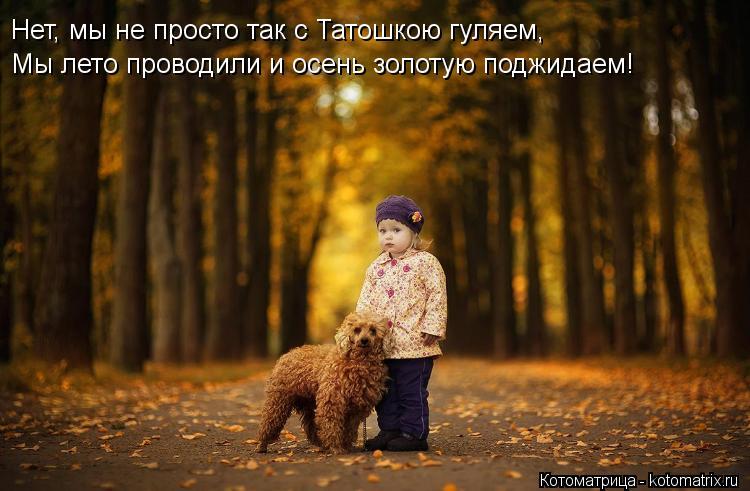 Котоматрица: Нет, мы не просто так с Татошкою гуляем, Мы лето проводили и осень золотую поджидаем!