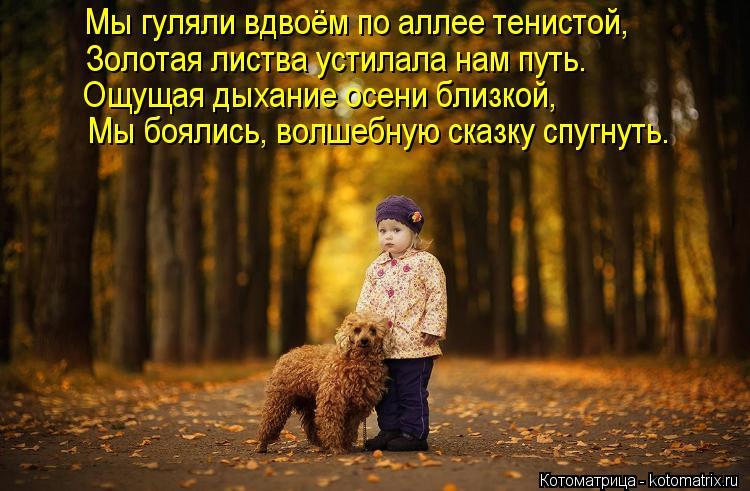 Котоматрица: Мы гуляли вдвоём по аллее тенистой, Золотая листва устилала нам путь. Ощущая дыхание осени близкой, Мы боялись, волшебную сказку спугнуть.