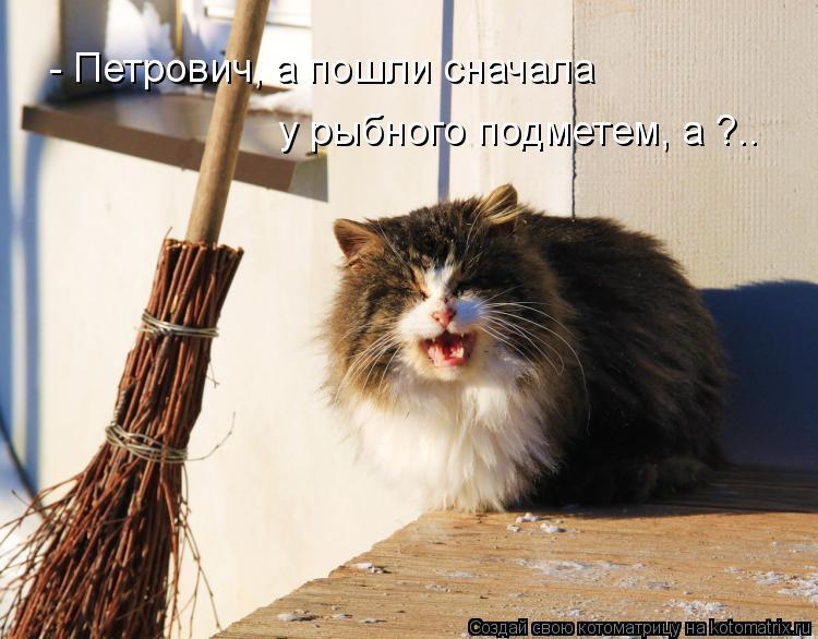 Котоматрица: - Петрович, а пошли сначала у рыбного подметем, а ?..