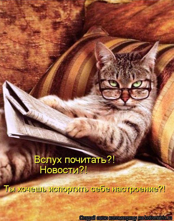 Котоматрица: Вслух почитать?!  Новости?! Ты хочешь испортить себе настроение?!