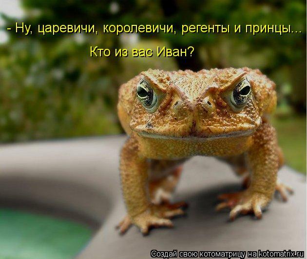 Котоматрица: - Ну, царевичи, королевичи, регенты и принцы... Кто из вас Иван?