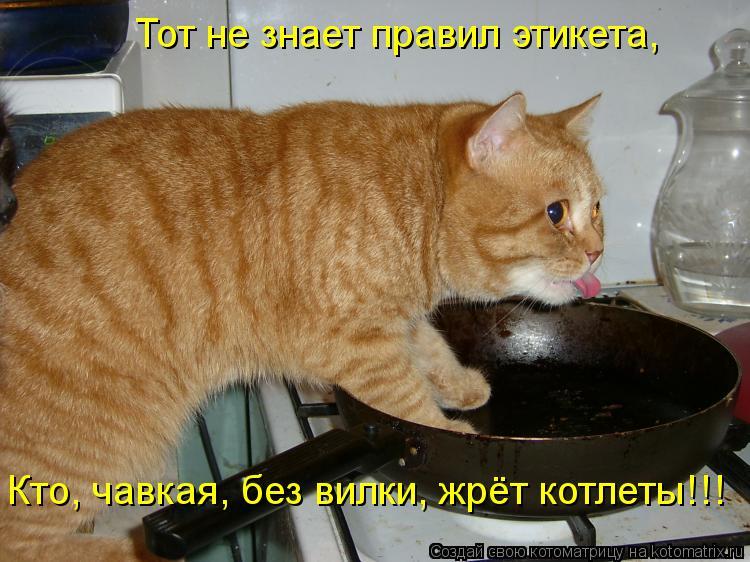 Котоматрица: Тот не знает правил этикета, Кто, чавкая, без вилки, жрёт котлеты!!!
