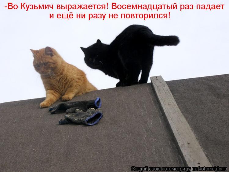 Котоматрица: -Во Кузьмич выражается! Восемнадцатый раз падает и ещё ни разу не повторился!