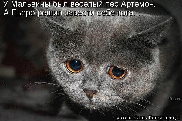 Котоматрица: У Мальвины был веселый пес Артемон. А Пьеро решил завести себе кота...