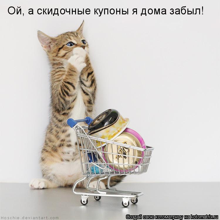 Котоматрица: Ой, а скидочные купоны я дома забыл!