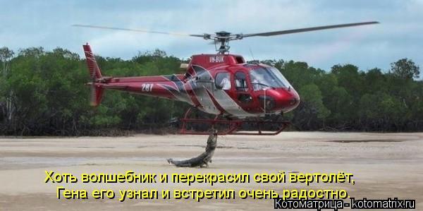 Котоматрица: Хоть волшебник и перекрасил свой вертолёт,  Гена его узнал и встретил очень радостно.