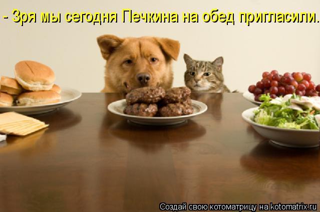 Котоматрица: - Зря мы сегодня Печкина на обед пригласили.