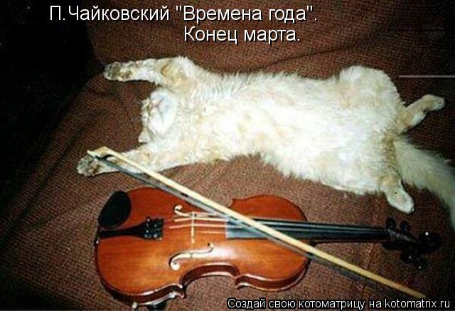 """Котоматрица: П.Чайковский """"Времена года"""".  Конец марта."""
