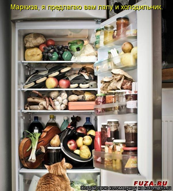 Котоматрица: Маркиза, я предлагаю вам лапу и холодильник.