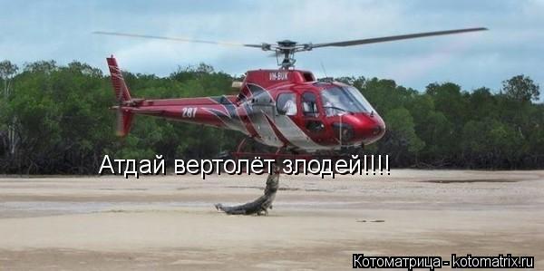 Котоматрица: Атдай вертолёт злодей!!!!