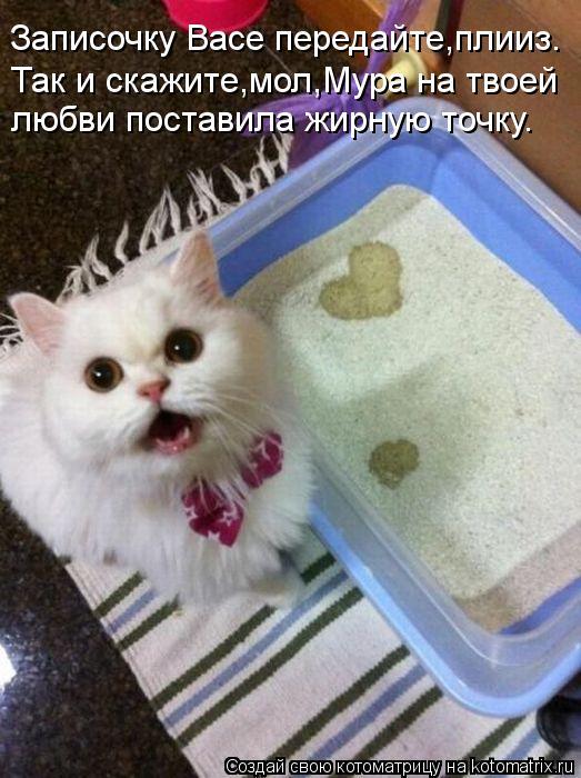 Котоматрица: Записочку Васе передайте,плииз. Так и скажите,мол,Мура на твоей любви поставила жирную точку.