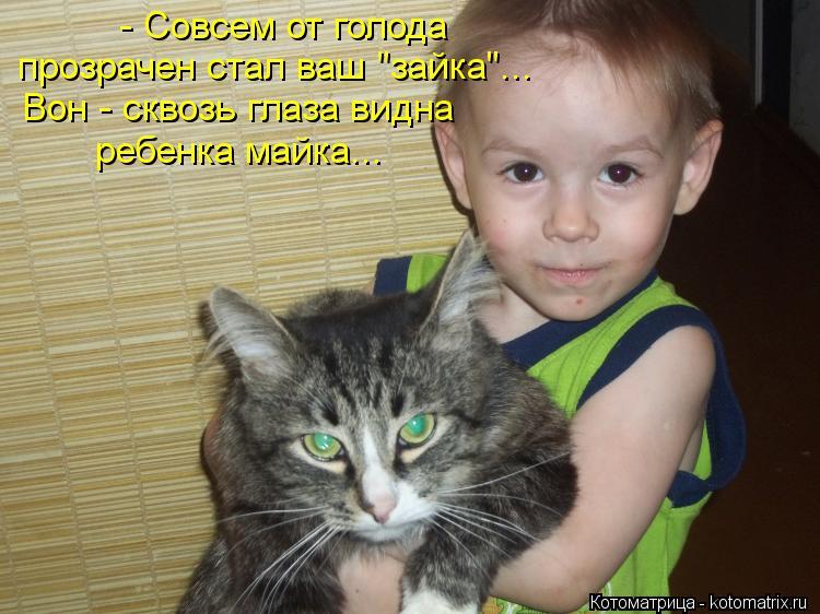 "Котоматрица: - Совсем от голода  прозрачен стал ваш ""зайка""... Вон - сквозь глаза видна ребенка майка..."