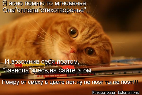 """Котоматрица: Я ясно помню то мгновенье: Она""""сплела""""стихотворенье""""... Помру от смеху в цвете лет:ну не поэт ты,не поэт!!! """"Зависла""""здесь,на сайте этом... И,возо"""