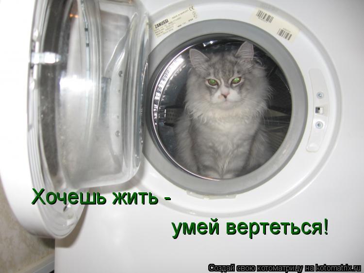 Котоматрица: Хочешь жить - умей вертеться!